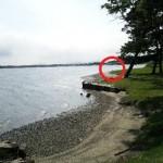 湖とピンクのハマヒルガオと謎の生命体との遭遇