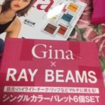 Gina夏号付録アイカラーパレット×6が豪華で安価すぎた・・・!